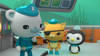 Download The Octonauts - Kelp Monster Mystery / Hippos Video