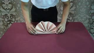 Download Napkin Folding - DTH2023 - Food And Beverage Services Video