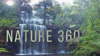 Download Virtual Nature 360° - 5K Nature Meditation for Gear VR, Oculus and Daydream Video