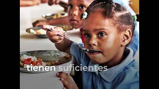 Download Tener acceso a alimentos nutritivos es un derecho humano, no un privilegio Video