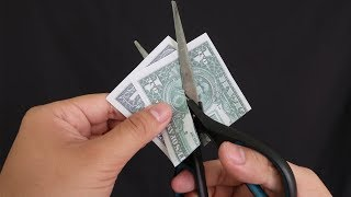 Download 5 Truly CRAZY Magic Tricks You Will Love To Do Video