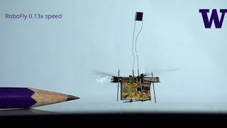Download The first wireless flying robotic insect takes off Video