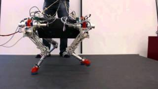 Download walking and running experiments with the quadruped robot StarlETH Video