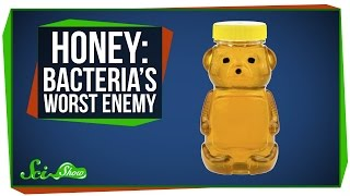 Download Honey: Bacteria's Worst Enemy Video