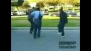 Download crnci igraju igraju svadbeno kolo Video