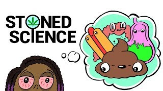 Download Stoned Girl Tries To Explain the Digestive System   STONED SCIENCE Video