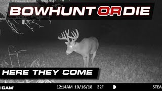 Download Close Calls With Some Nice Bucks - BHOD S09 E24 Video