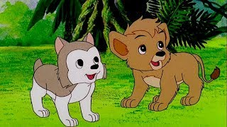 Download Unity Is Strength | SIMBA THE KING LION | Episode 4 | English | Full HD | 1080p Video