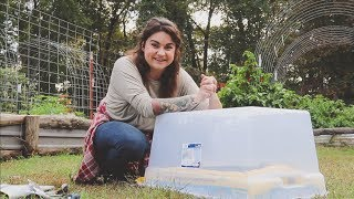 Download Grow Salad Greens All Winter For Less Than 20 Dollars | Gardening Tips | Roots and Refuge Video