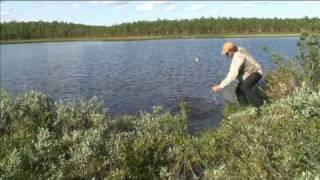 Download Lars Monsen - Ett År I Fisk (nordkalotten 365 kavalkade) Video