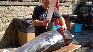 Download Fish Cutting in Sicily: Tuna and Swordfish Video