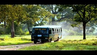 Download Bandipur Forest Safari - A video tour of Bandipur National Park Video