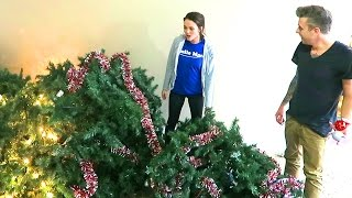 Download DESTROYED THE CHRISTMAS TREE!! Video