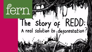 Download ″The Story of REDD: A real solution to deforestation?″ Video