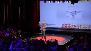 Download Get comfortable with your discomfort   Dane Barclay   TEDxQueenstown Video