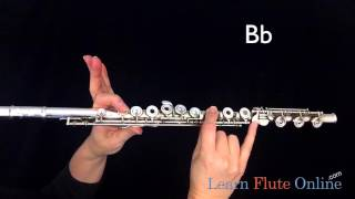 Download Hot Cross Buns on FLUTE for Band D C B flat Video
