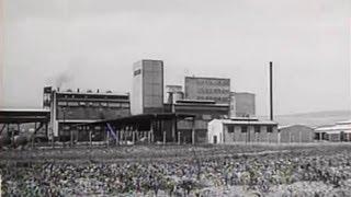 Download Košice - Magnezitka (1959) Video