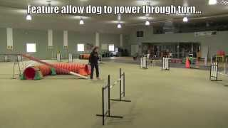 Download Tight Turns in Dog Agility...Video One Video