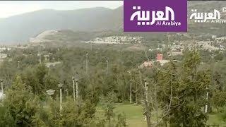 Download نشرة الرابعة .. مشروع لزراعة ملايين الأشجار في السعودية Video