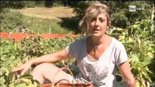 Download Gli orti Valdostani - Genuinus azienda agricola. Video