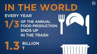 Download FOOD WASTE: a shame for human kind and for the environment Video
