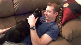 Download Cat Really Loves His Dad! Video