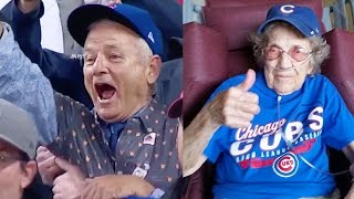 Download Best Cubs World Series Win Fan & Celebrity Reactions Video