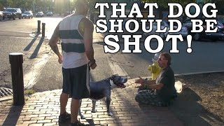 Download Does The Public Fear Pit Bulls? Aggressive Dog Breed Social Experiment! Video