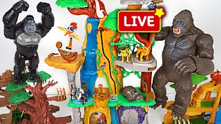 Download DuDuPopTOY Live Streaming Video