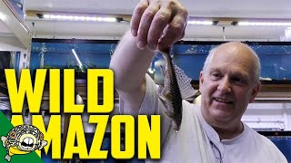Download WILD FISH UNBOXING! Video