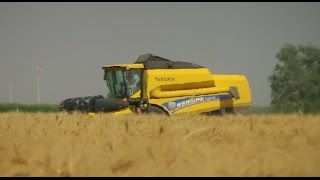 Download NEW HOLLAND TC5070 HARVEST 2014 Video