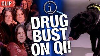 Download QI | Drug Bust on QI! Video