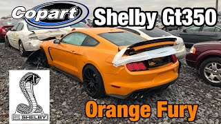 Download Looking at Burned Semi, Wrecked 2018 Mustang Shelby GT350, Maserati At Copart Salvage Auction Video