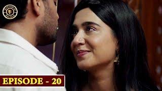 Download Surkh Chandni   Episode 20   Top Pakistani Drama Video