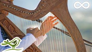 Download Relaxing Harp Music: Sleep Music, Meditation Music, Spa Music, Study Music, Instrumental Music ★49 Video