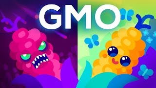 Download Are GMOs Good or Bad? Genetic Engineering & Our Food Video