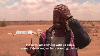 Download Responding to the drought in Somalia Video