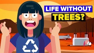 Download Could Humanity Survive Without Trees? Video