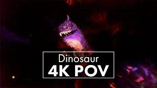 Download Dinosaur | Animal Kingdom | 4K POV Video