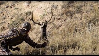 Download Sneaky hunter actually grabs a buck! Video
