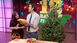 Download This Healthy Fruit Could Actually Kill Your Tree Video
