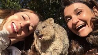 Download G'day, Australia! (Anjali and Carolina at Supanova 2017) Video