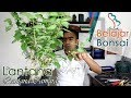 Download Pemangkasan Bahan Bonsai Saliara / Lantana (Lantana Camara) Video