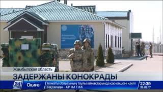 Download Задержаны конокрады, пытавшиеся перегнать лошадей из Кыргызстана в Казахстан Video