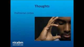 Download Empathy and Brain Plasticity with Rick Hanson Video