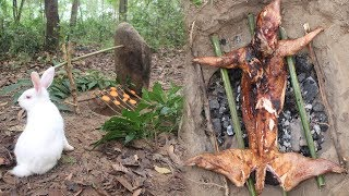 Download Primitive Technology: Simple rabbit trap in the forest and bake it in an aboriginal way Video