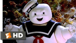Download Ghostbusters (8/8) The Stay Puft Marshmallow Man Movie CLIP - (1984) HD Video
