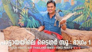 Download Sriracha Tiger Zoo Part 1 - Pattaya - Tech Travel Eat Thailand Malayalam Video Part 2 Video