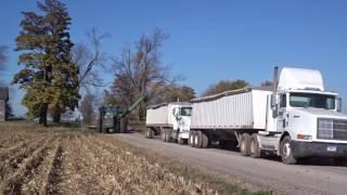 Download Case IH 9240 Combine Corn Harvesting in Britton, Michigan Harvest 2016 Video