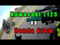 Download Honda Grom VS Kawasaki Z125 | Drag Race! Video